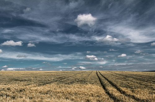 Clouds and rolling wheat fields.